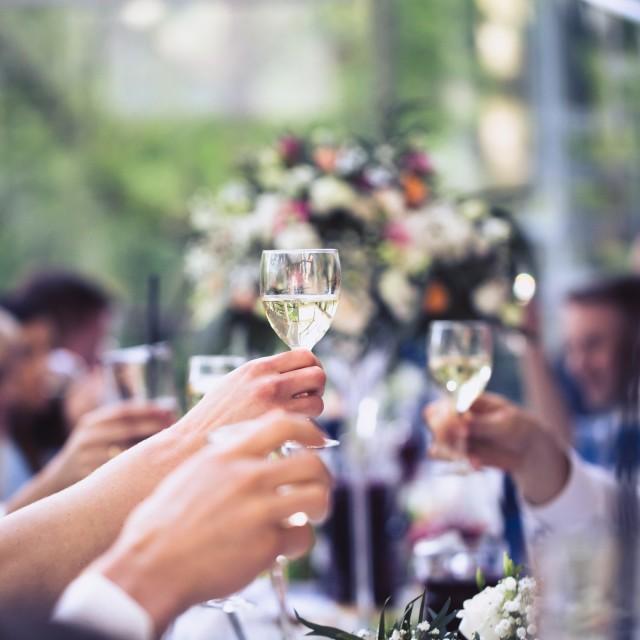 Inese Kungurova – kāzu fotogrāfe